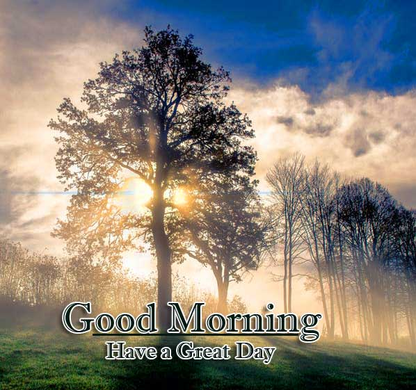 Beautiful Free Good Morning Wishes With Sunrise Wallpaper Pics Download