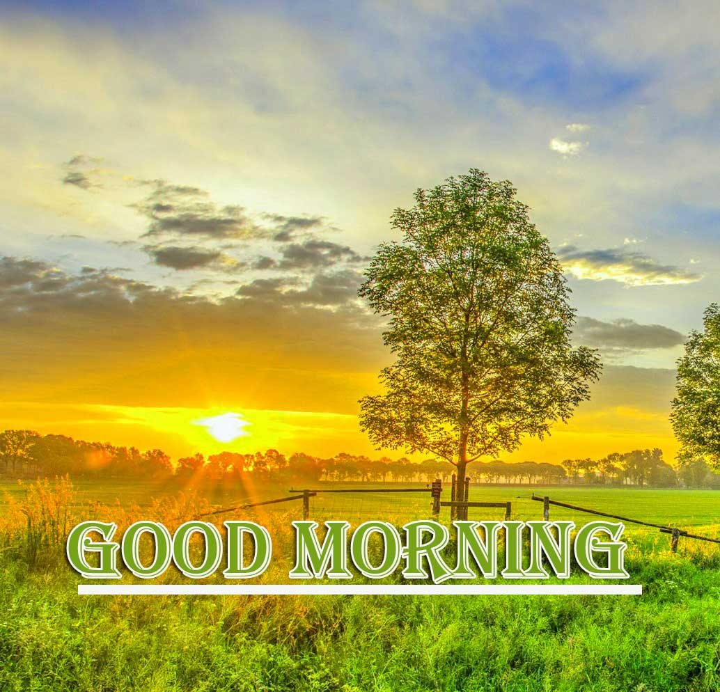 Free Nature Beautiful Free Good Morning Wishes With Sunrise Pics Wallpaper Download