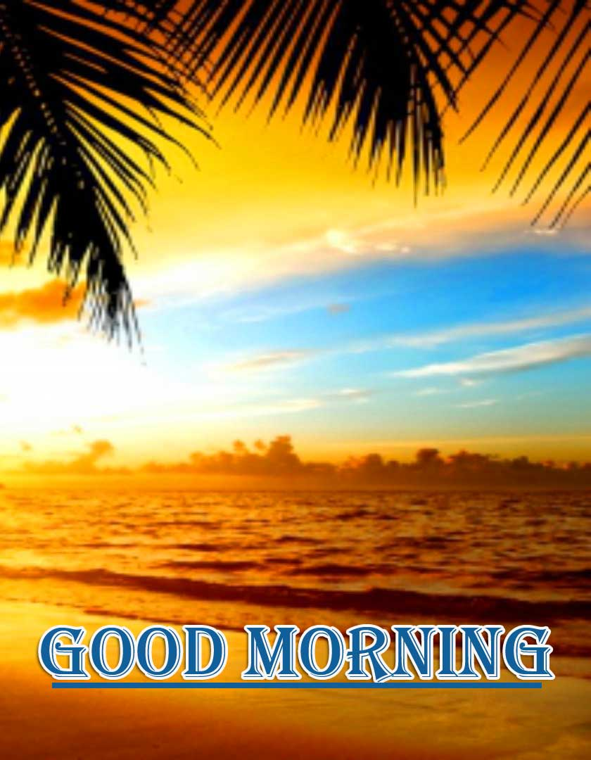 Beautiful Free Good Morning Wishes With Sunrise Pics Free Latest Download
