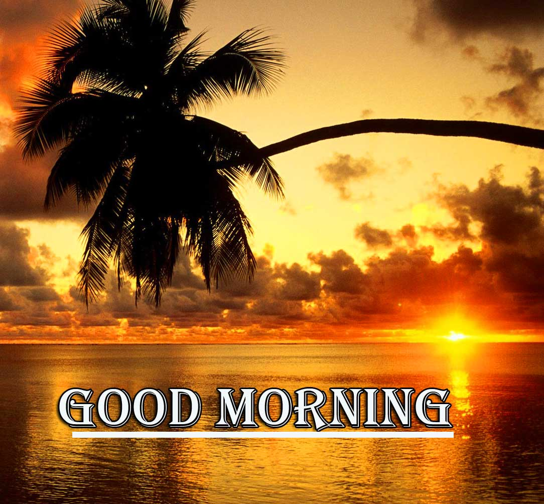 Beautiful Free Good Morning Wishes With Sunrise Pics New Download