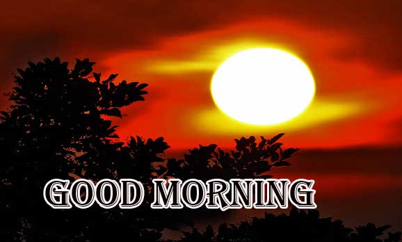 Beautiful Free Good Morning Wishes With Sunrise Pics Download Free
