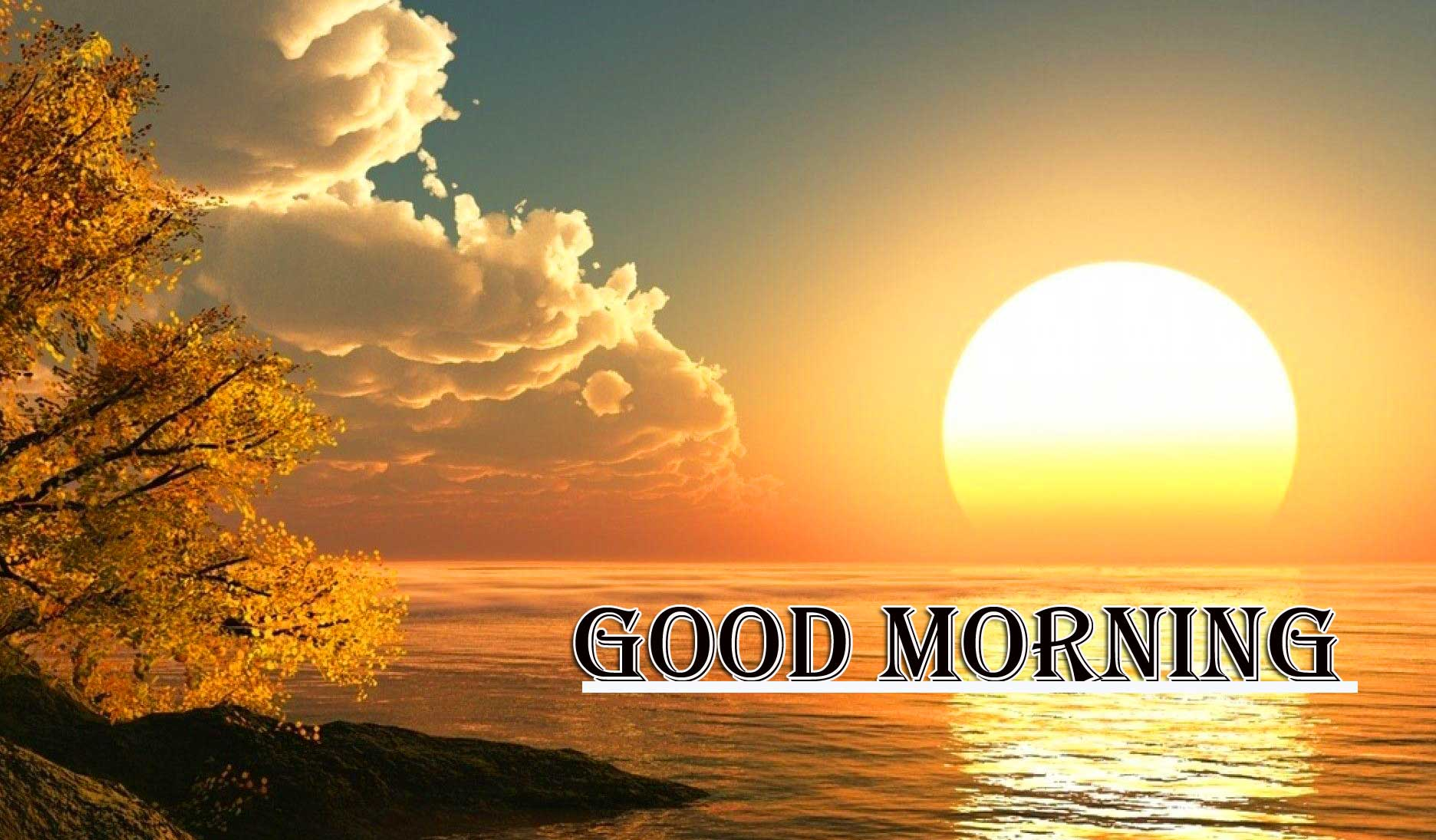 Beautiful Free Good Morning Wishes With Sunrise Wallpaper Latest Free Download