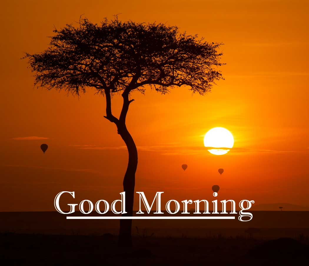 Best Free Beautiful Free Good Morning Wishes With Sunrise Wallpaper New Download