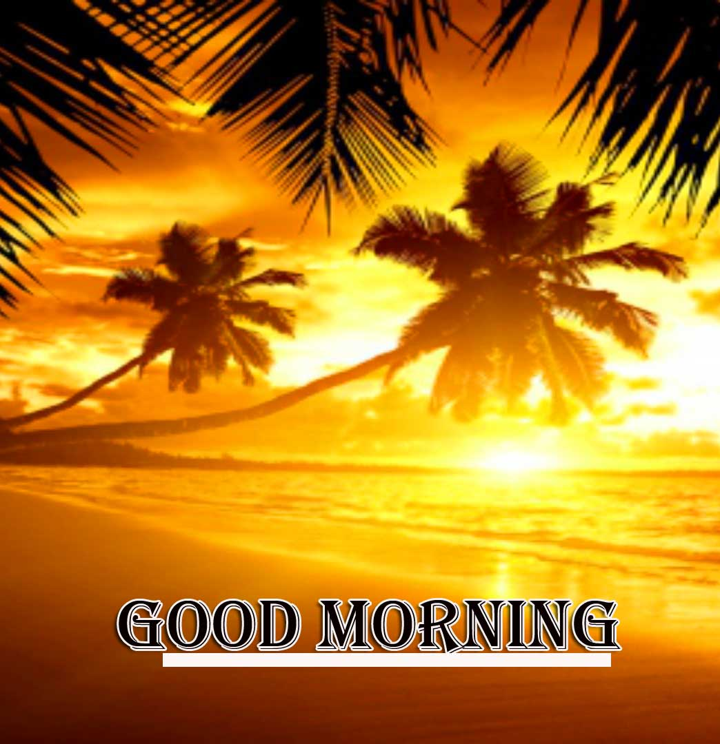 Best Free Beautiful Free Good Morning Wishes With Sunrise Pics Free Download