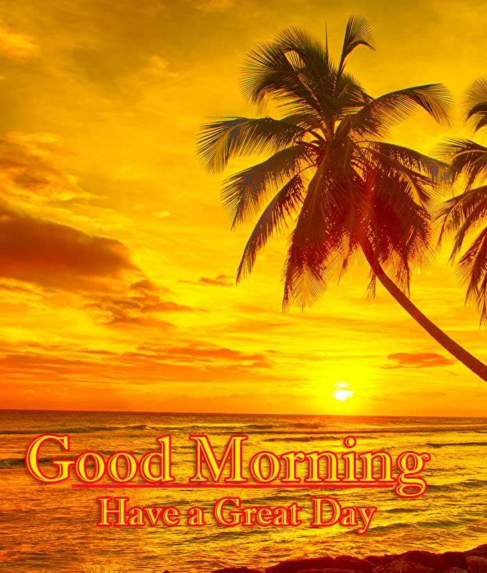 Best Free Beautiful Free Good Morning Wishes With Sunrise Pics Wallpaper Download