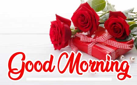 Beautiful for Girlfriend Red Rose Good Morning Pics Downward New