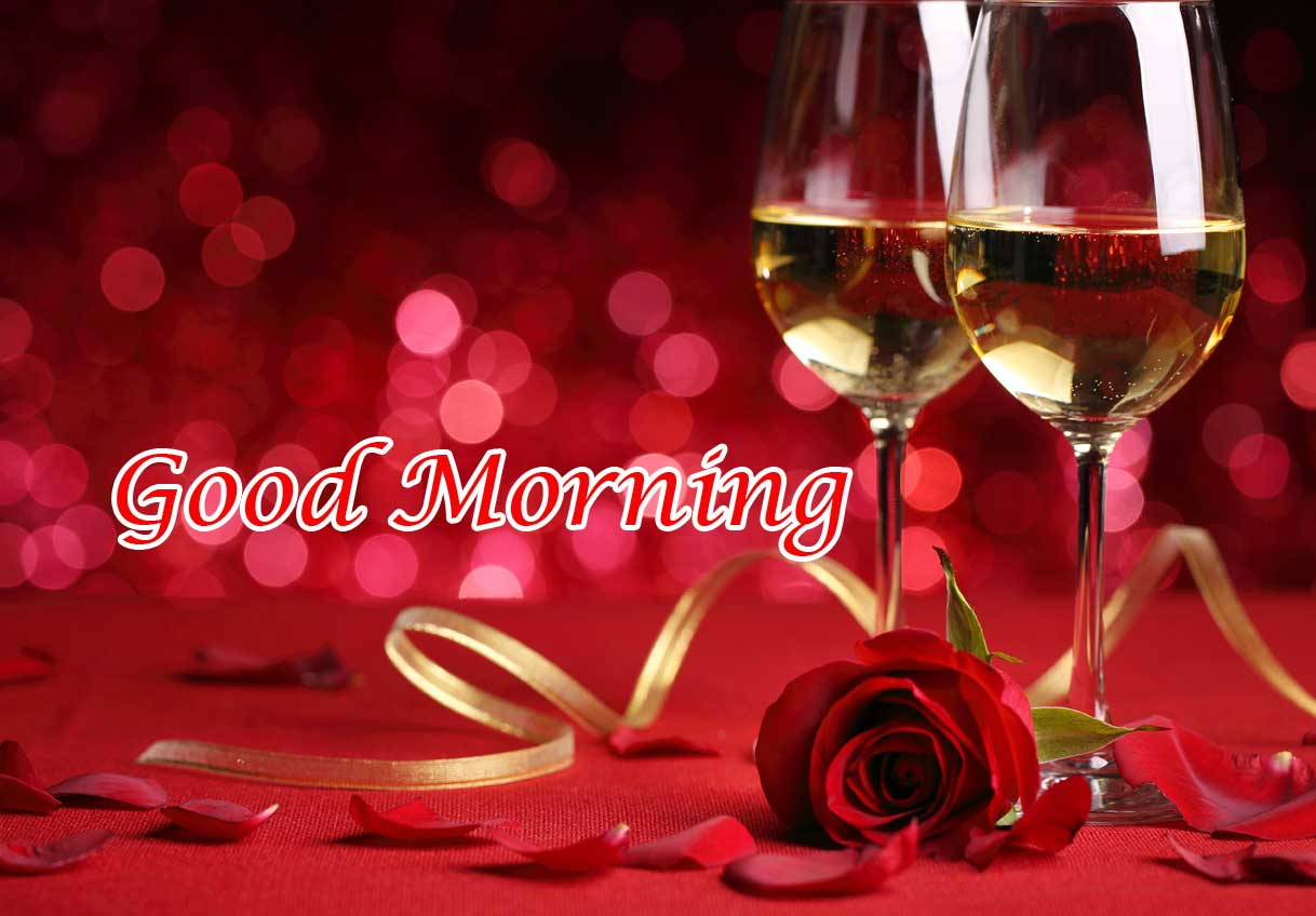 Latest Beautiful Red Rose Good Morning Photos Pics Download