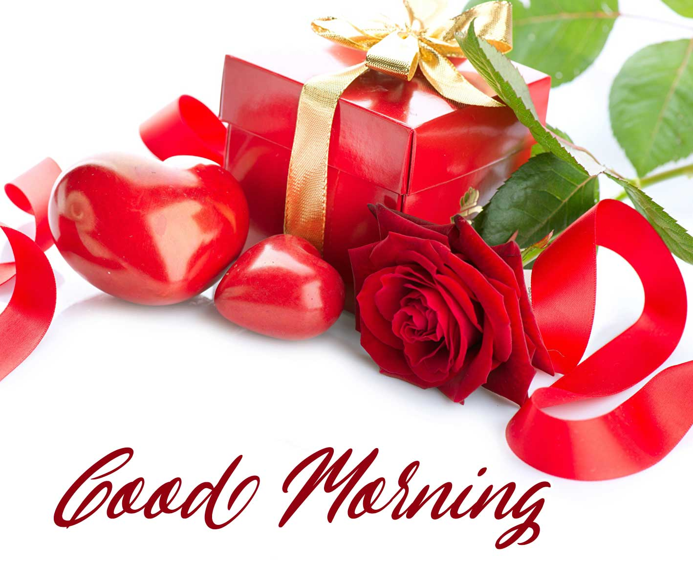 Beautiful Red Rose Good Morning Photos Pics New Download