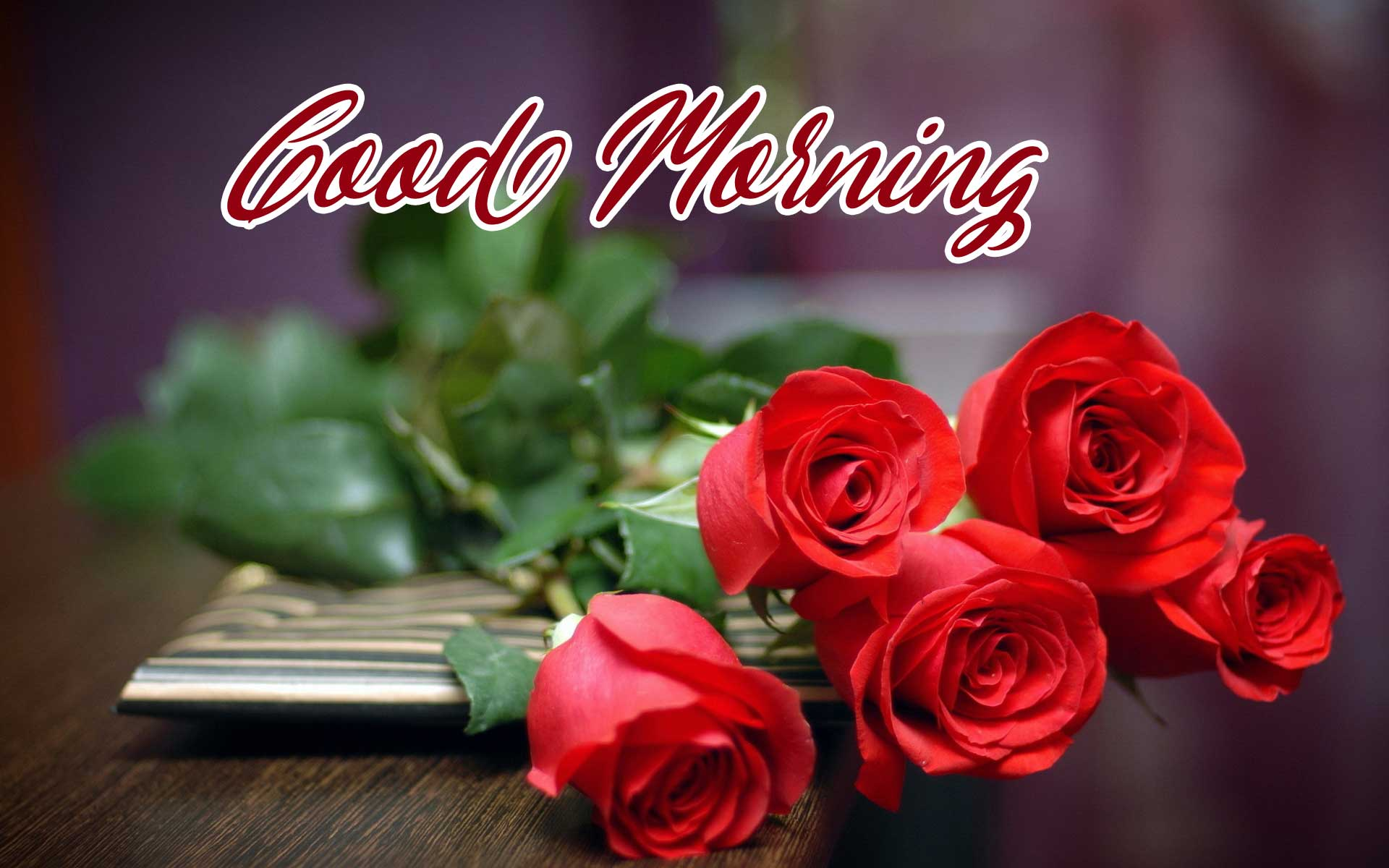 Latest Free Beautiful Red Rose Good Morning Pics Download