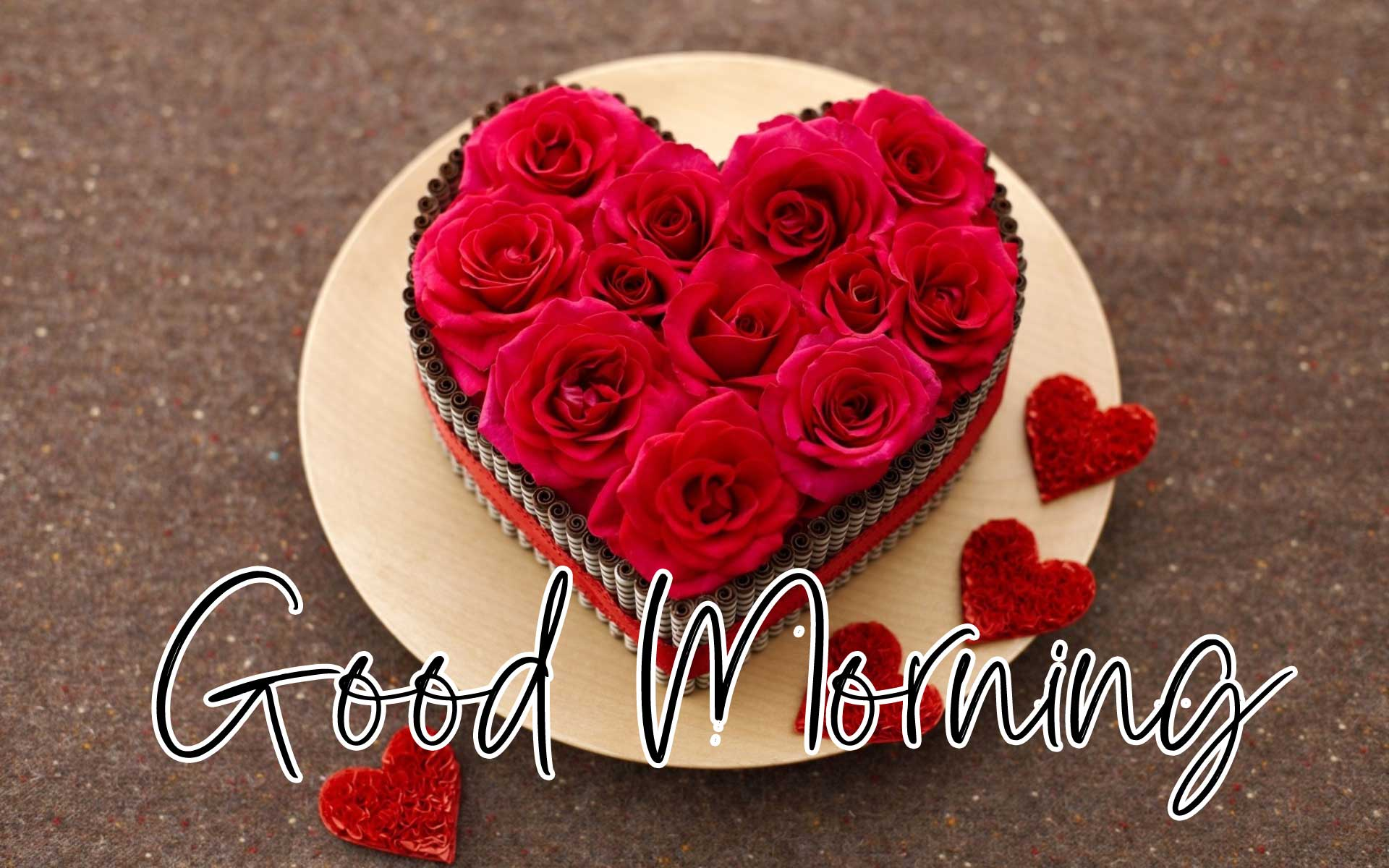Beautiful Red Rose Good Morning Pics Wallpaper for Love Couple