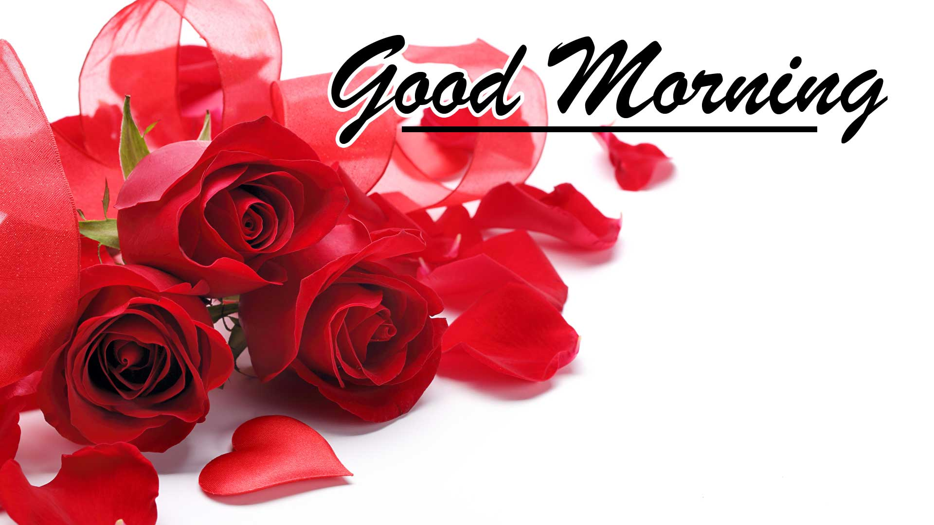 Beautiful for Girlfriend Red Rose Good Morning Pics Images Download Latest