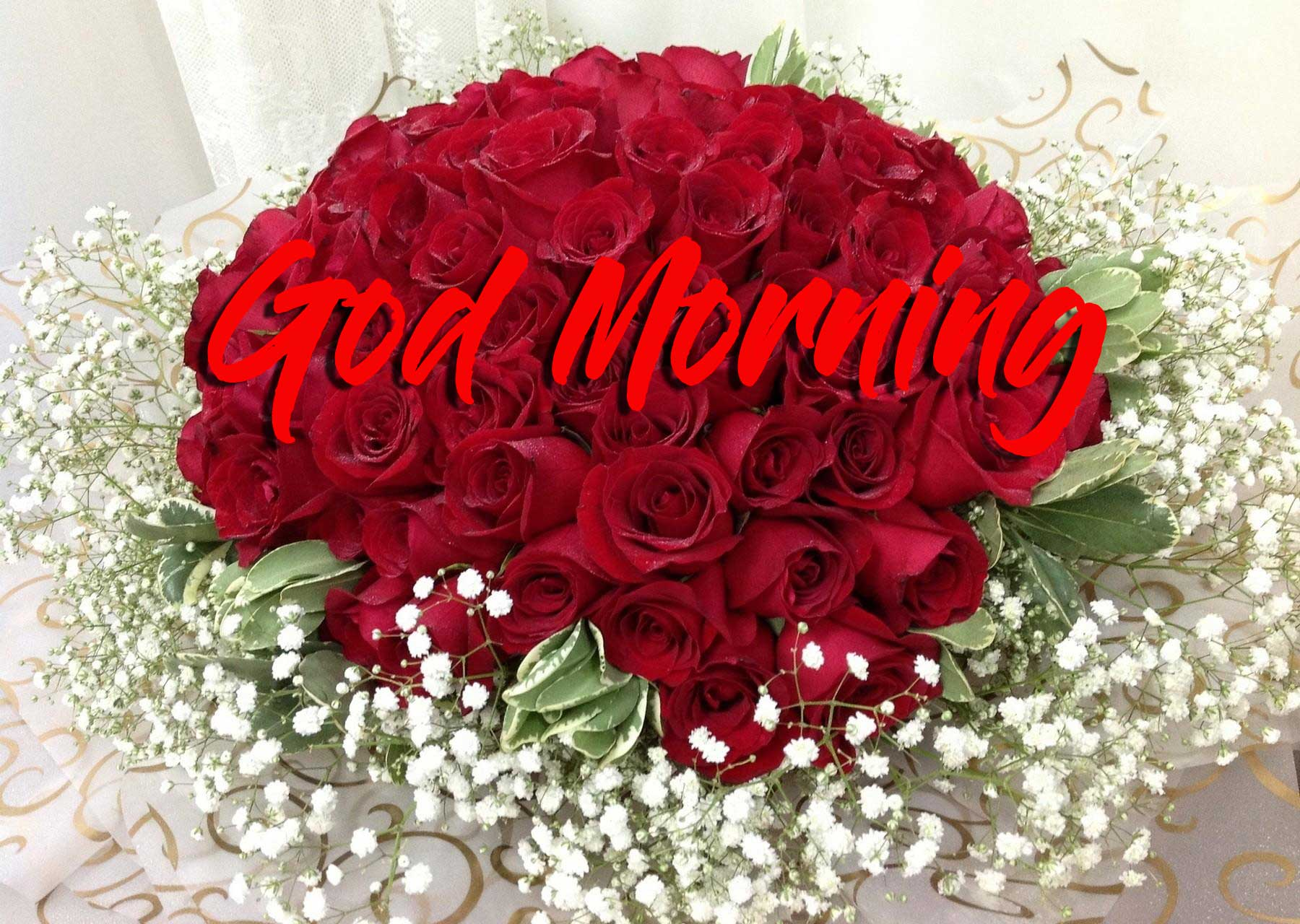 Beautiful for Girlfriend Red Rose Good Morning Photo for Facebook