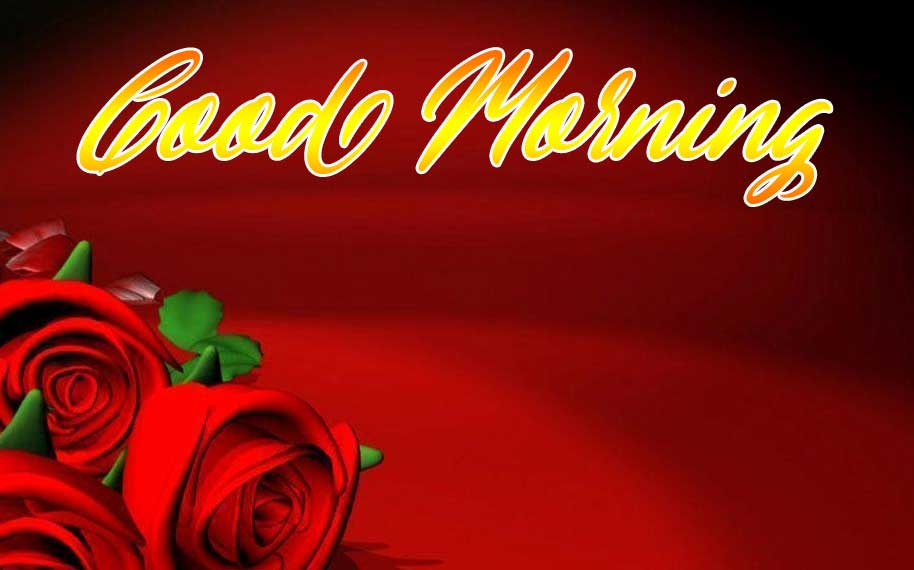 Beautiful for Girlfriend Red Rose Good Morning Pics Wallpaper Free Download