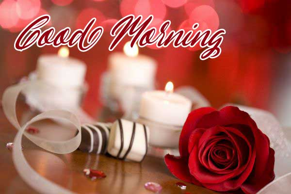 Beautiful for Girlfriend Red Rose Good Morning Wallpaper Dow load free