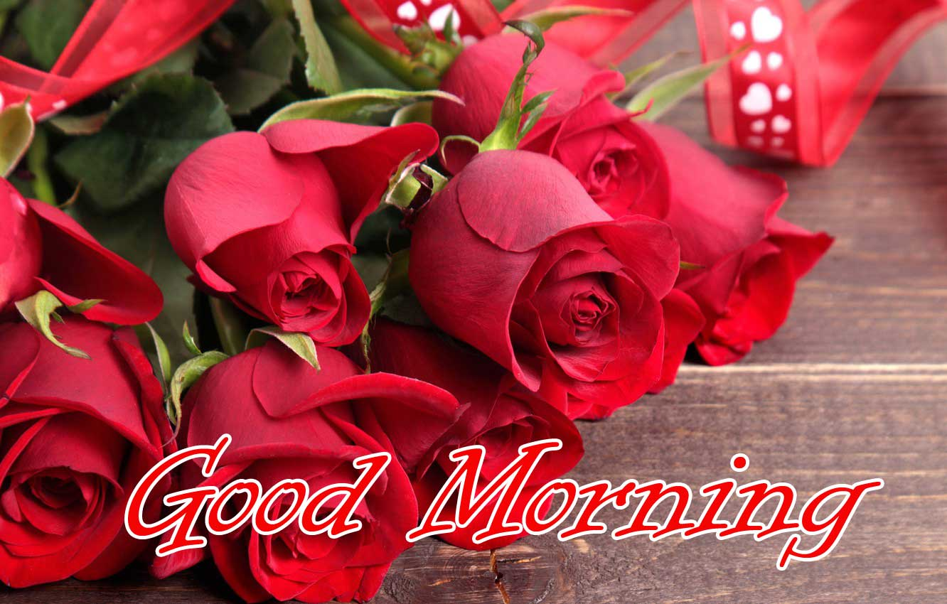 Beautiful for Girlfriend Red Rose Good Morning Pics Wallpaper for FB