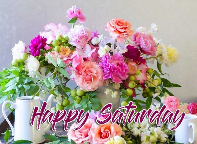 Flower Free Happy Saturday Good Morning Pics Wallpaper Download