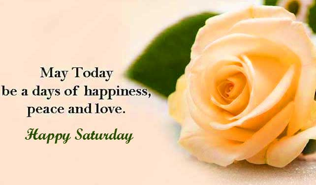 With Rose Free Happy Saturday Good Morning Images Download