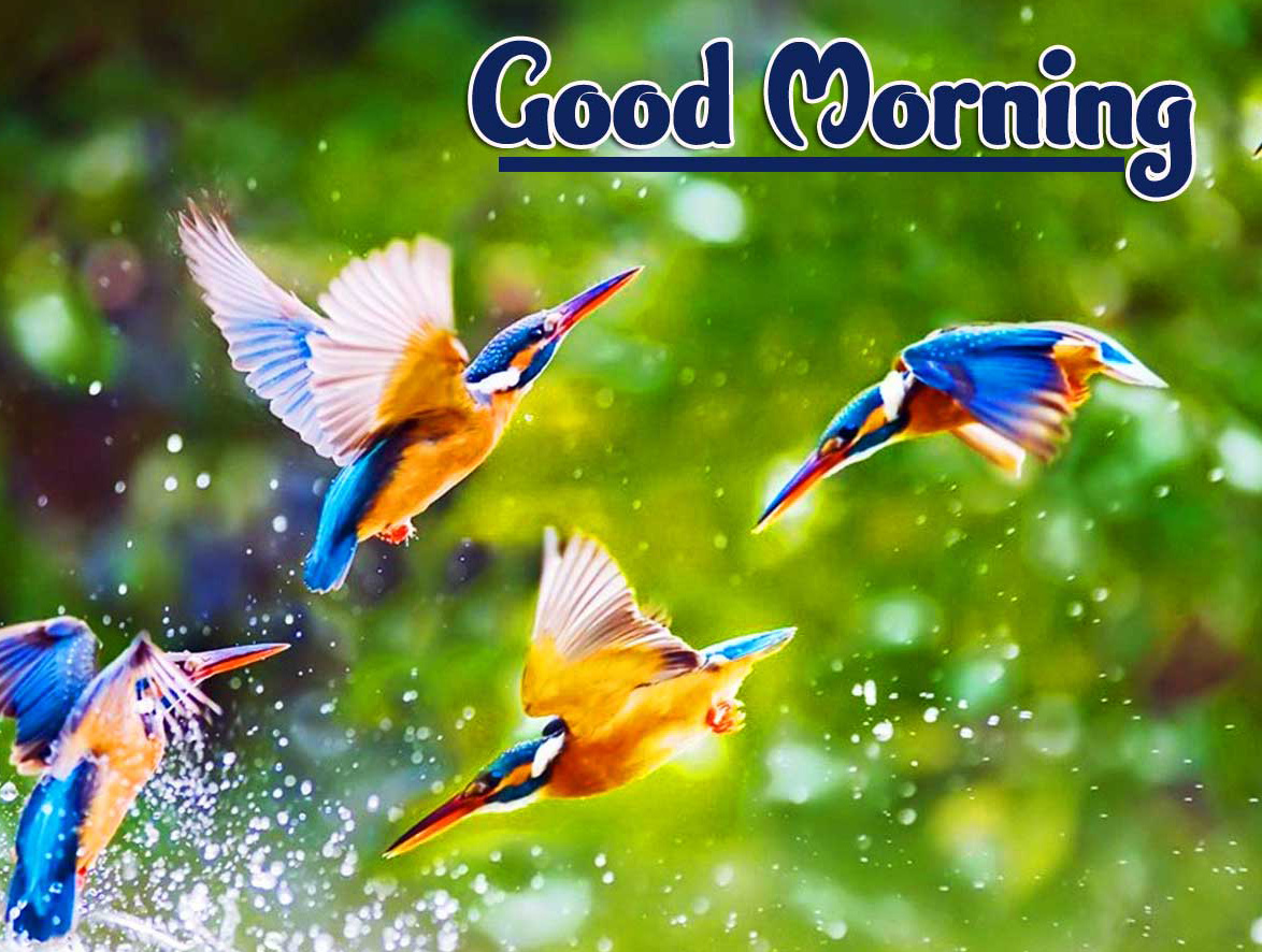 2021 Good Morning Images Photo Download Latest