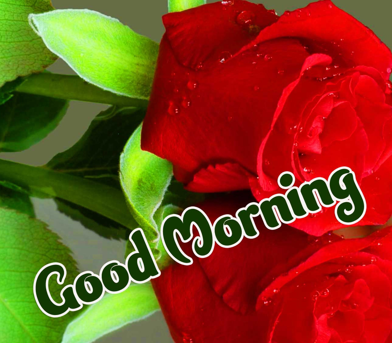 Beautiful 2021 Good Morning Images Wallpaper for Facebook