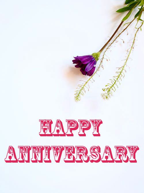 152+ Happy Anniversary Images Free Download