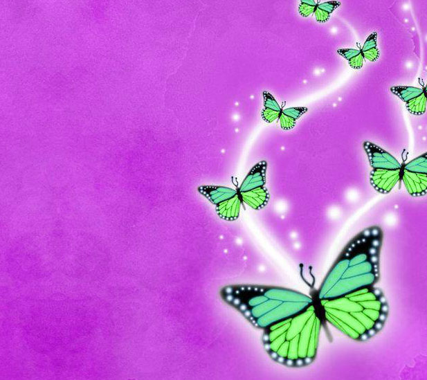 Best Butterfly Whatsapp Dp Images Pics