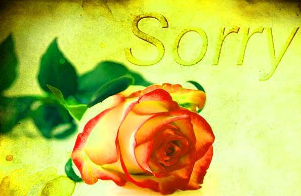 Best Sorry Whatsapp Dp Download