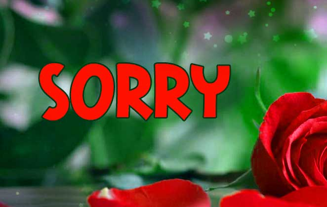Best Sorry Whatsapp Dp Images wallpaper
