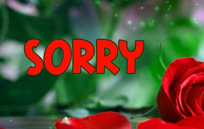 Best Sorry Whatsapp Dp Images wallpaper