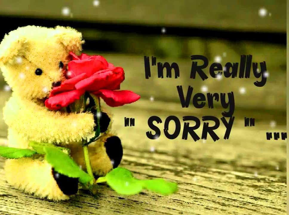 Best Sorry Whatsapp Dp Photo