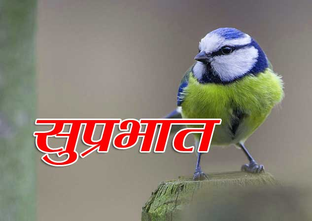 Best Suprabhat Download Photo