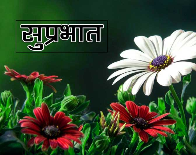 Best Suprabhat Download