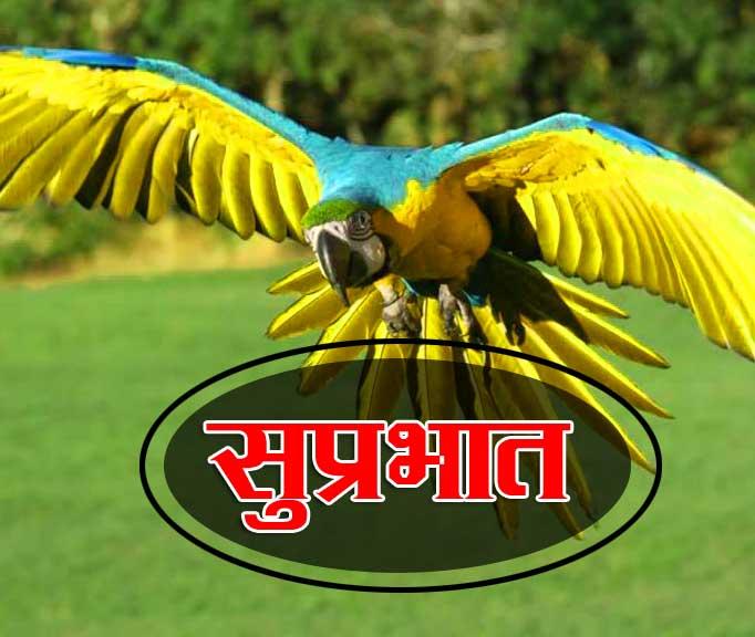 Best Suprabhat Images Pics Hd