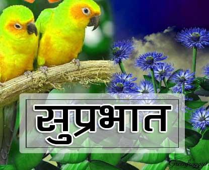 Best Suprabhat Images Pics
