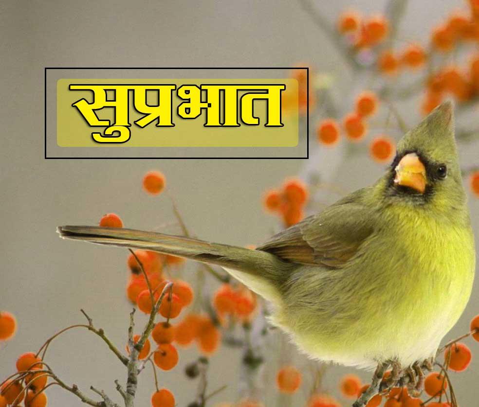 Best Suprabhat Pics Images