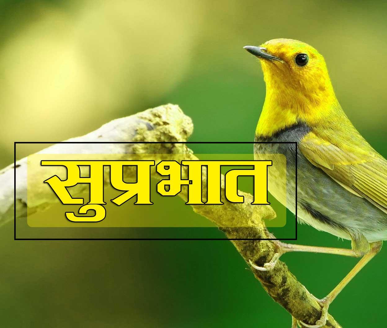 Best Suprabhat Pics
