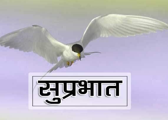 Best Suprabhat wallpaper Pics