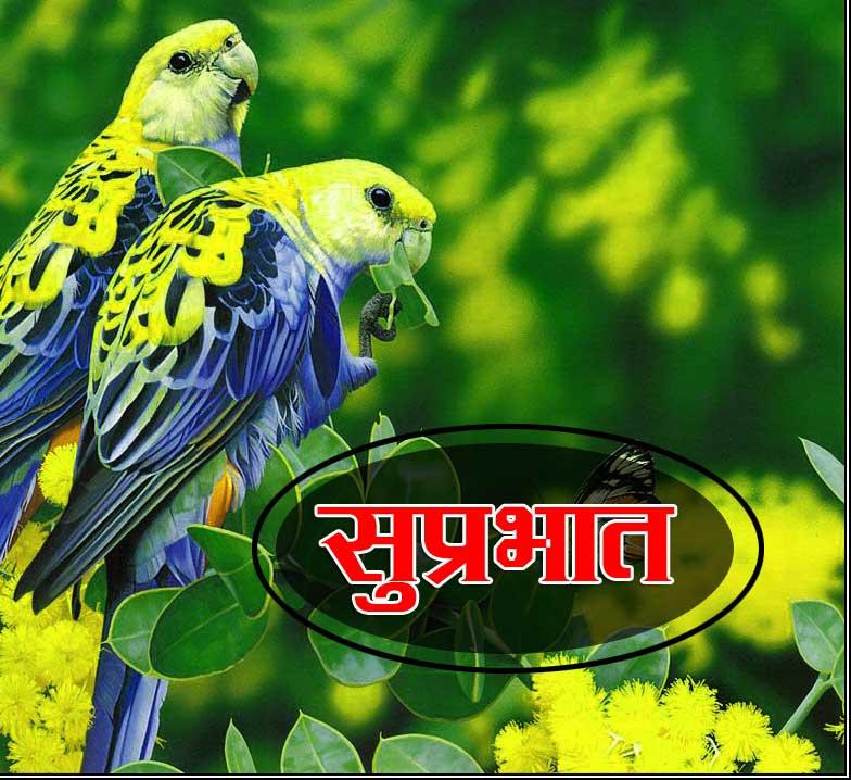 Best Suprabhat