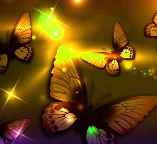 Butterfly Whatsapp Dp Hd Free Download