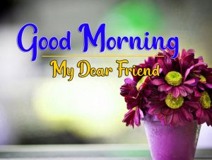 Good Morning Images Wallpaper With Flower In hd