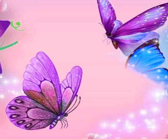 New Butterfly Whatsapp Dp Download