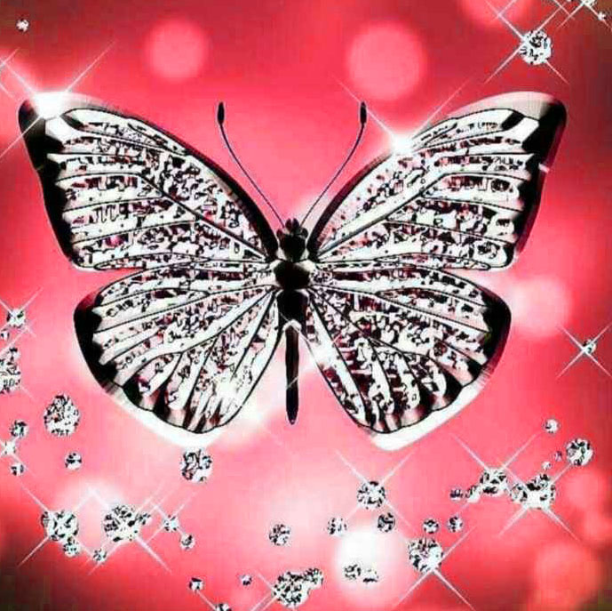 New Butterfly Whatsapp Dp Pics Download