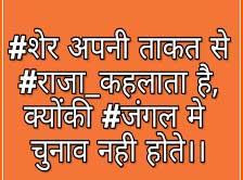 New Hindi Whatsapp Status Free Wallpaper