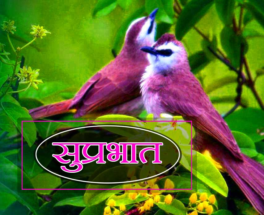 New Suprabhat Download Photo