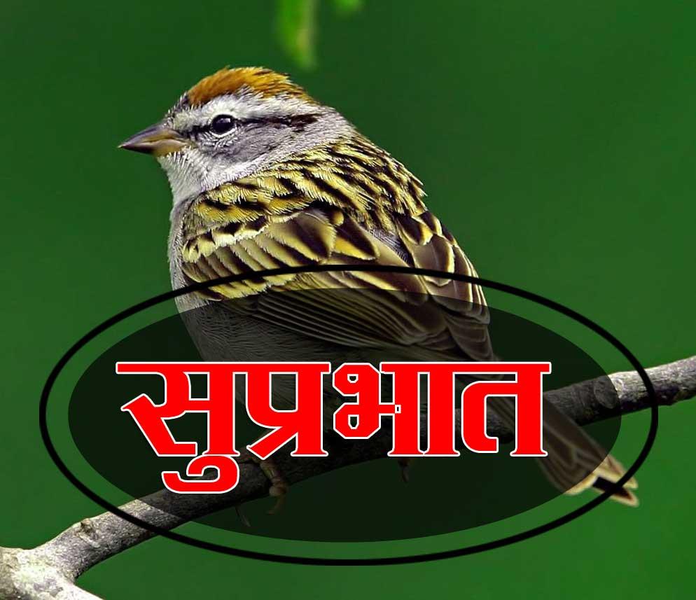New Suprabhat Download Pics