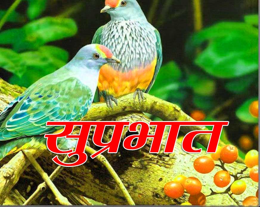 New Suprabhat Download