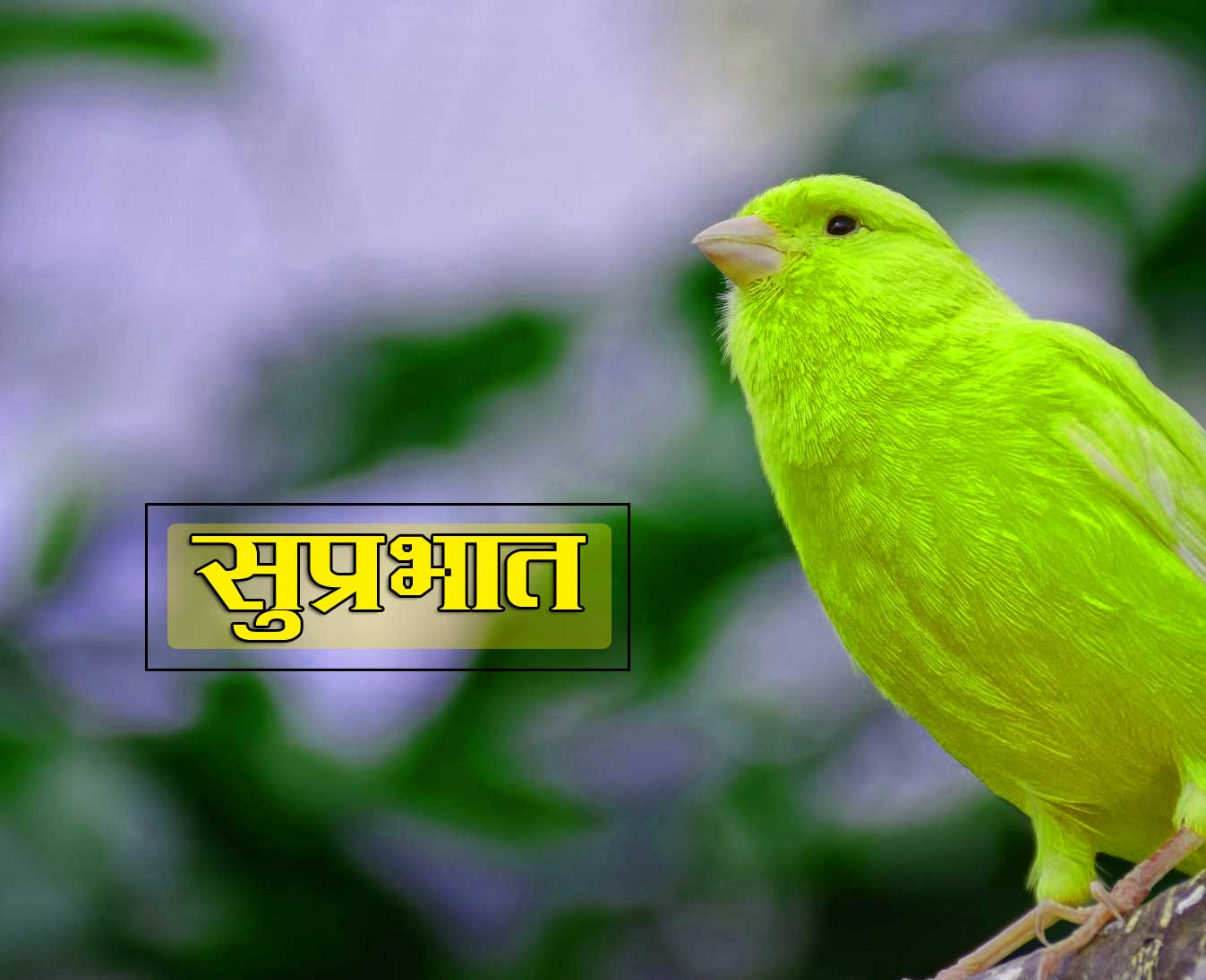 New Suprabhat Images Download