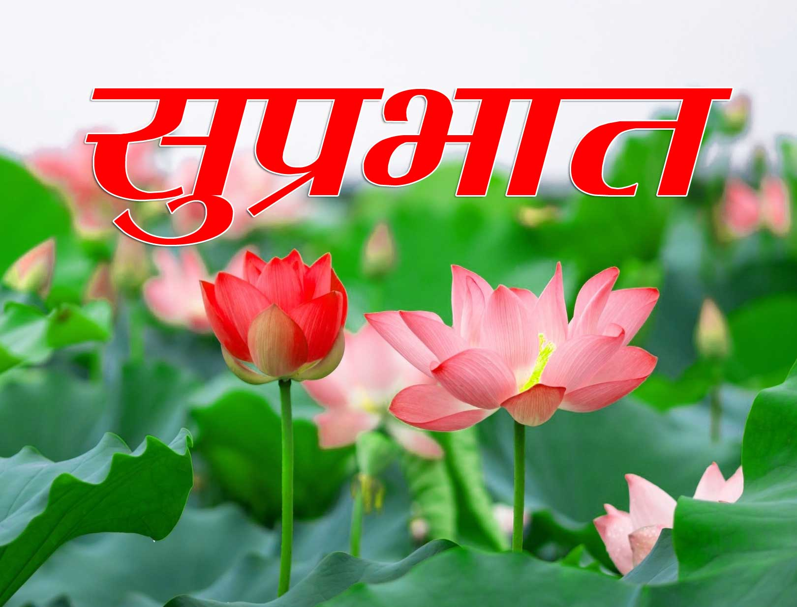 New Suprabhat Images Photo