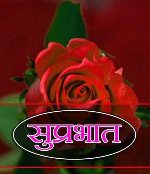 New Suprabhat Images Pics