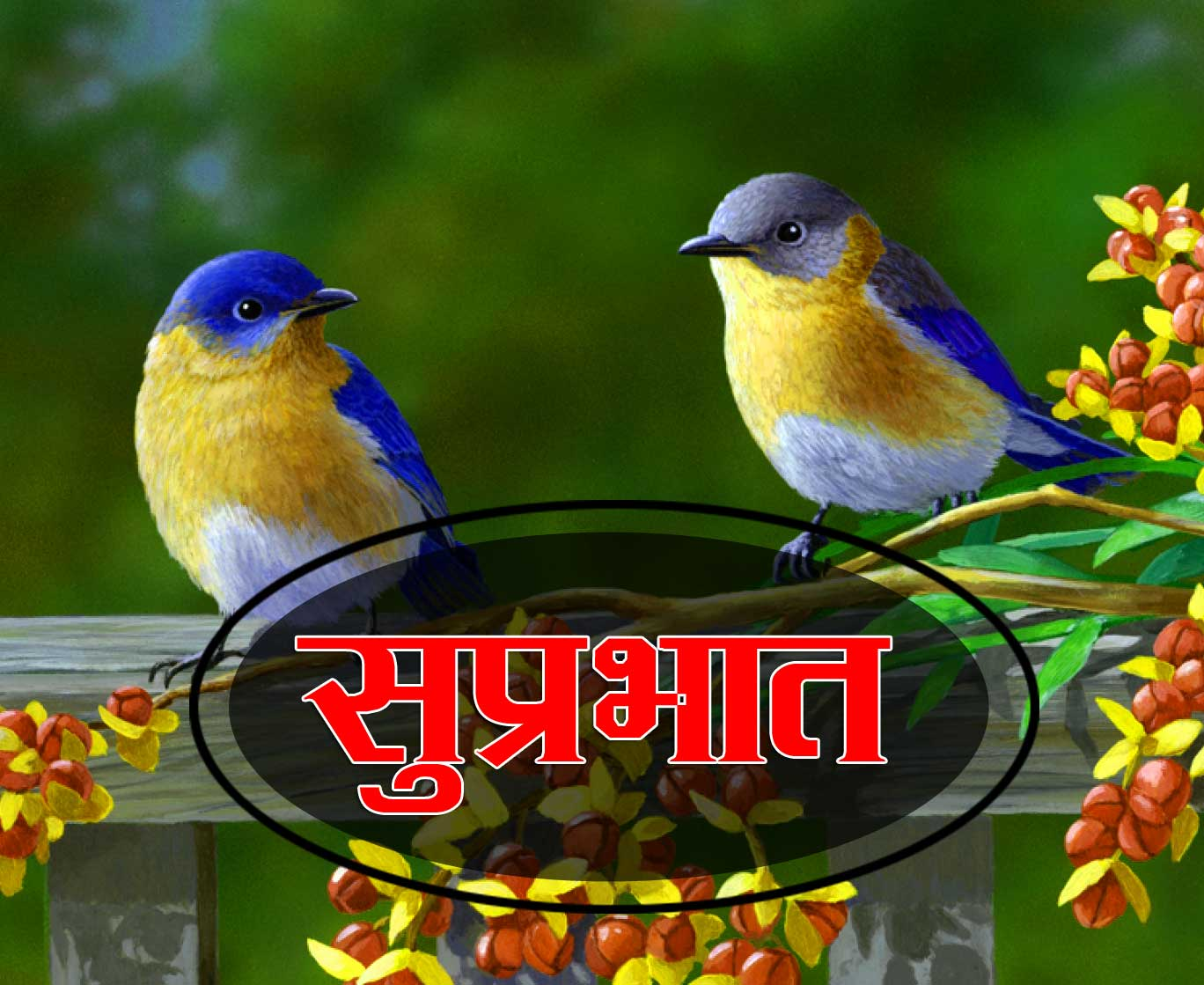 New Suprabhat Photo Wallpaper