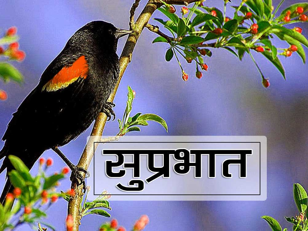 New Suprabhat Pics Pictures